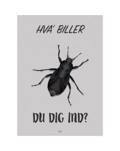 HVA BILLER DU DIG IND?