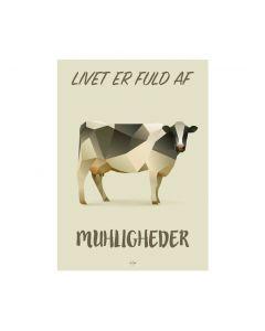 MUHLIGHEDER